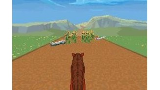 Control the horse as you dodge and jump objects in your path on your way to Patch of Heaven